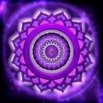 crown chakra wisdom