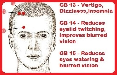 gall bladder 13-15 helps eye & head issues