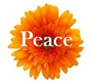 august gratitude cultivating peace
