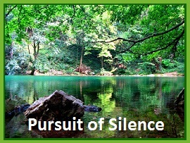 tuesday's healing word silence