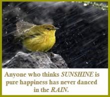 Nature's healing rain energy
