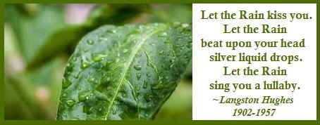 Nature's Rain healing Energy