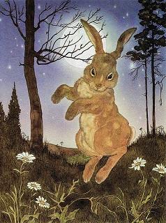 rabbit power animal