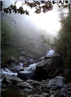 nature's healing gift - babbling brook