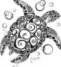 Animal Spirit Guide Turtle