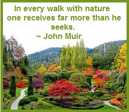 nature's green symbolizes master healer