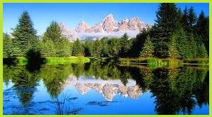nature's green symbolizes master healer