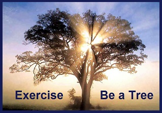 Eercise - Be A Tree