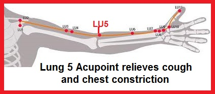 Lung 5 Relieves Cought & Lung Constriction