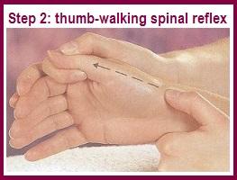 thumb-walking spinal reflex hands