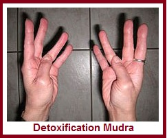 Hand Mudras for Helping Detox Body