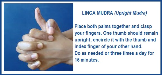 Linga Mudra for Immune System & More
