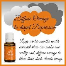 orange essential oil winter's happy oil