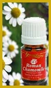 Essential OIls for Grief & Loss