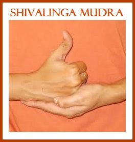 Shivalinga Mudra-Energy Chargling