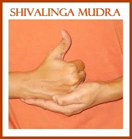 Shivalinga Mudra-Energy Chargling