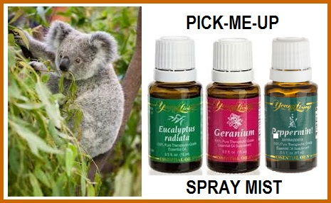 Pick-Me-Up Spray Mist