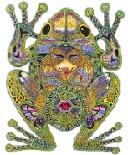 Animal Spirit Guide Frog