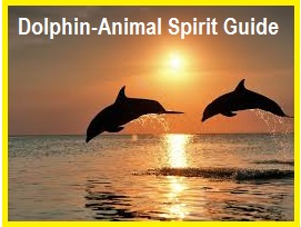 Animal Spirit Guide Dolphin