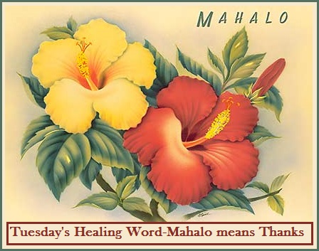 Tuesday's Healing Word - Mahalo