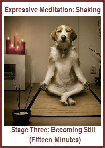 Expressive Meditation-Shaking