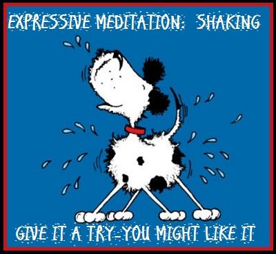 Expressive Meditation: Shaking