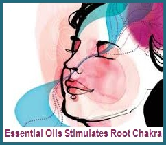 Root Chakra Checkup & Essential Oils