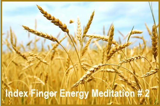 Index Finger Energy Meditation #2