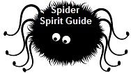 Spider Spirit Guide