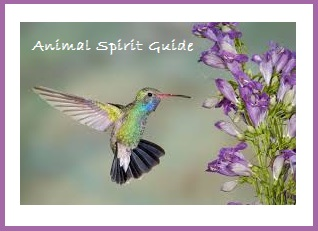 Animal Spirit Guide - Humingbird