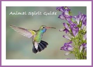 Animal Spirit Guide - Humingbird