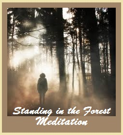 Standing In The Forest Meditation