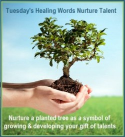 Tuesday's Healing Words Nurtur Talent