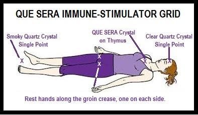Que Sera Immune-Stimulator Grid