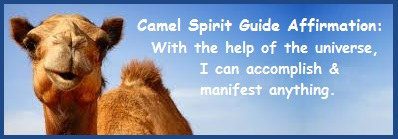 Animal Spirit Guide - Camel