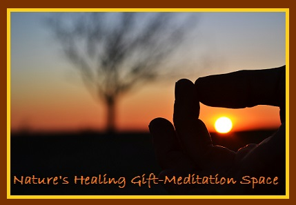 Nature's Healing Gift-Meditation Space