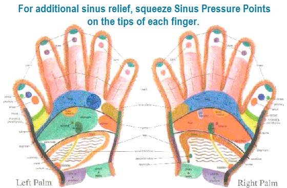 Sinus Relief-Essential Oils & More