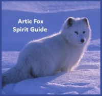 Animal Spirit Guide - Fox