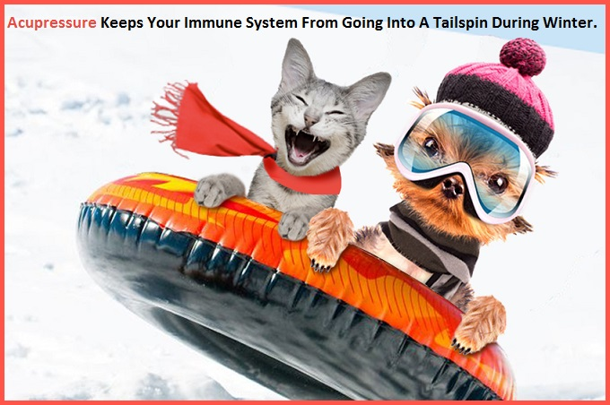 Acupressure For Immune Challenges