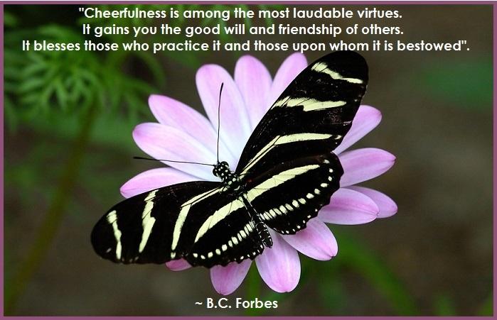 Cheerfulness 2-3