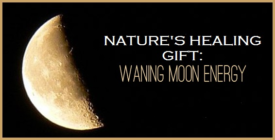 Nature's Energy Gift, Waning Half-Moon