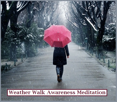 Rain Walk Awareness Nedutatuib
