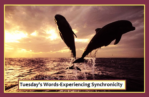 Tuesday's Words-Experiencing Synchronicity
