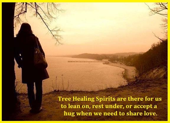 Nature's Tree Healing Spirits