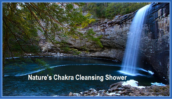 Chakra Cleansing Shower