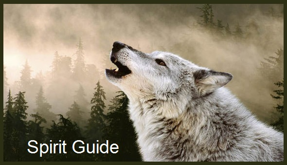 Wolf Animal Spirit Guide