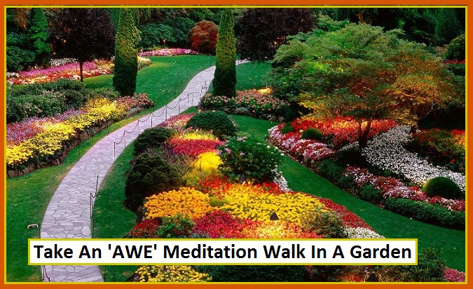 Take An 'AWE' Meditation Walk