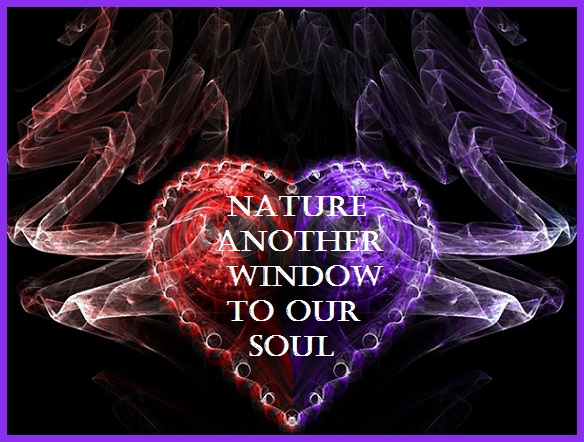 Windows In Our Soul
