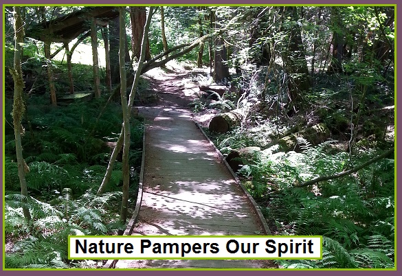 Nature Pampers Our Spirit