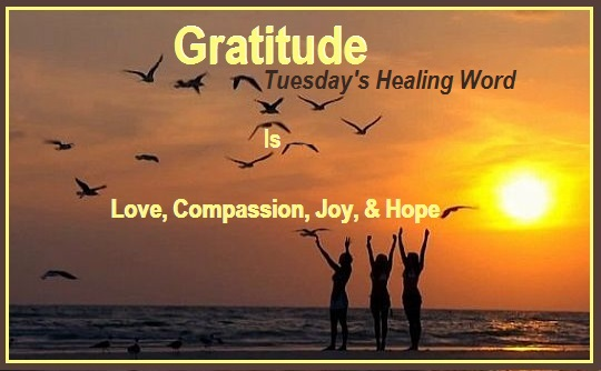 Tuesday's Healing Word = Gratitude